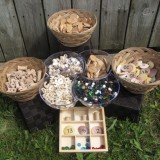 Mastering Math - Sorting & Classifying with Natural Materials