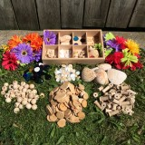Invitation Table: Discovering Loose Parts