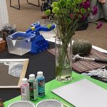 Naturalizing Your Indoor Environment