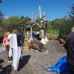 tree limb structure in playground