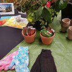 Seedlings and gardening gloves display